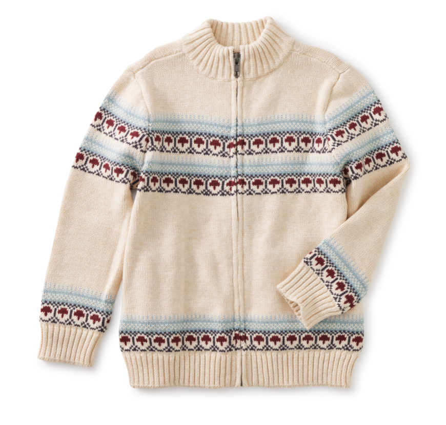 tea collection boy sweater